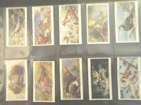 Birds & Their Young  Player series 1 Tobacco Card Set of 25 cards collection