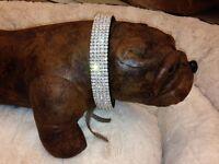 "Extra Large Black Swarovski Crystal Rhinestone Dog Collar fits 21-24"" necks"