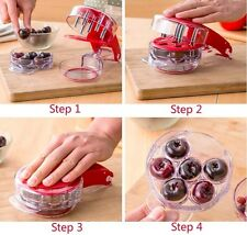 Creative Easy Cherry Pitter Stoner Corer Olives Pits Removal Fruit Tool