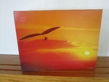 Complete 500 Piece Vintage Springbok Puzzle.  Hang Gliding.