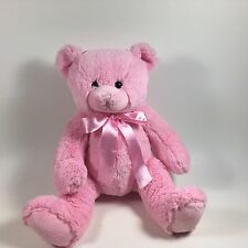 Pretty Pink Plush Teddy Bear Girls Valentines Gift Soft Lovey Stuffed Animal