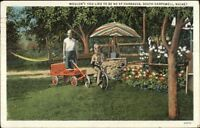 South Harpswell ME Boy on Tricycle Pulling Wagon Postcard
