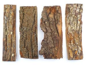 4 Tree bark pieces for floristry, model making diorama. texture rock effect 1931