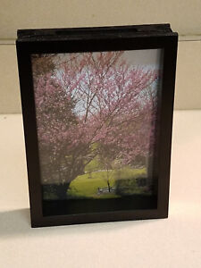 "Pinnacle Frames & Accents Impulse Designs 6"" x 4"" Photo Frame #05FM1487 (NEW)"