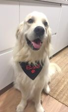 PERSONALISED DOG BANDANA and COLLAR  ANY NAME EMBROIDERED LARGE -Clothing