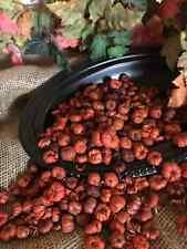 Mini Pumpkin Pods 2 cups Unscented Putka Pods , bulk botanicals DIY Potpourri