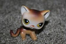 Littlest Pet Shop Siamese Kitty #19 Cat Brown Tan Yellow Green Eyes LPS Toy 2005
