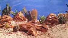 poster fond d aquarium decor PLANTES PIERRES SUR FOND BLEU 40 x 30 cm