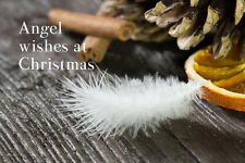 Angel Christmas Card friend or family. White Feather Christmas Card Blank inside