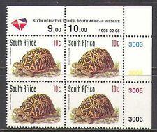 RSA 1998 Tortoise/Animals/Nature/Wildlife rdrw 1v c/b (za10051)