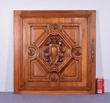 French Antique Renaissance Revival Panel/Door in Solid Walnut Wood