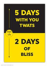 Brainbox CANDY divertenti umorismo a6 Blocco Note Book Pocket GIORNALE Novità Regalo Di Compleanno