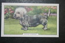 Dandie Dinmont    1930's Original  Vintage Coloured Card  VGC