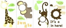WallPops! Wall Art Kit Jungle and Friends Photo Frame Wall Decal Monkey Lion NIB