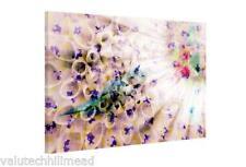 Parvez Taj en apesanteur art graphique Enveloppé sur toile 41 cm x 61 cm