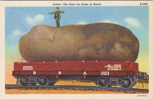 Linen postcard, oversized embellished potato, Grown in Maine, on train car