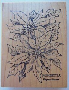 PSX Petaluma CA Wood Mounted Rubber Stamp Poinsettia Euphorbiaceae K-784 Large