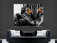 CAT EYES ORANGE DIGITAL  ART WALL LARGE IMAGE GIANT POSTER !!