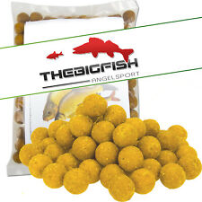 Pro Line Readymades Boilies The NG Squid 1,00kg Boilie Karpfenköder