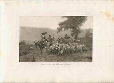 ANTIQUE SHEPHERDESS DONKEY LAMB HERB DOG PHEASANT GAME BIRD CORN BREAD ART PRINT