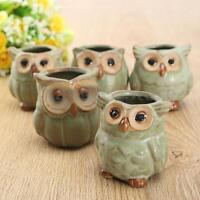 5PCS/Set Mini Small Ceramic Owl Succulent Plant Pot Garden Flower Planter Basket