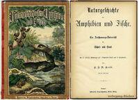 Kolb, Naturgeschichte der Amphibien und Fische, 7 kolorierte Doppeltafeln, 1880