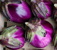 🍆 20 Samen Violette Aubergine Florenz Eierfrucht Eierpflanze Solanum melongena