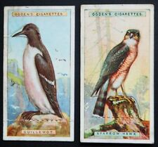 F 1-50 *PLEASE SELECT* GALLAHER ANIMALS /& BIRDS OF COMMERCIAL VALUE 1921