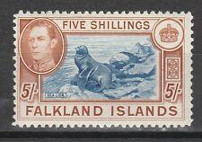 FALKLAND ISLANDS 1938 KGVI SEA LION 5/-