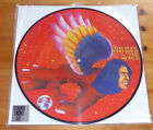 """DAVID BOWIE """"THE MAN WHO SOLD THE WORLD"""" RECORD STORE DAY2016 PICTURE DISC NEUF"""