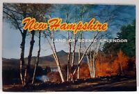 Vintage New Hampshire Land of Scenic Splendor Brochure Color Picture Booklet