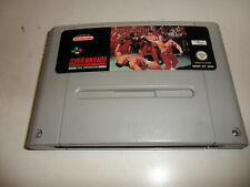 SUPER NINTENDO SNES PIT FIGHTER