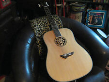 Lady Liberty Limited Edition Acoustic/Electric Guitar +CASE Jay Turser JT-110NG!