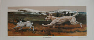 """Limited edition print - Lurcher - """"The Mountain Hare"""" by the late Vic Granger"""