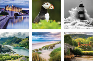 Photographic blank notecards, 6 designs, 1 of each, 117 x 117mm, with envelopes
