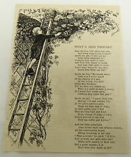 1879 magazine engraving with poem ~ WHAT A BIRD THOUGHT