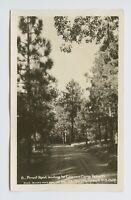 RPPC - Laguna, Resort, CA - c1920s LAGUNA CAMP RESORT FOREST ROAD - DPO - Q