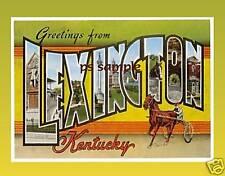 Kentucky - LEXINGTON - Travel Souvenir Magnet