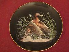 CINNAMON TEAL collector plate TOMMY HUMPHREY Bradford Exchange WATER BIRDS Ducks