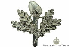 Staybrite South Nottinghamshire Hussars Regiment Staybright Cap Badge - Anodised