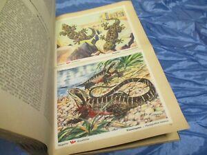 Das Tierreich , Sammelbilderalbum 3 , VOSS  Kunstbilder , Margarine Reklame 1951