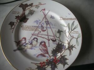 The Country Diary of An Edwardian Lady DECEMBER (Birds Feeding & Holly) Plate