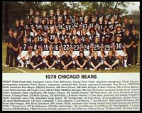 NFL 1978 Chicago Bears Color Team Photo Color 8 X 10 Photo Picture