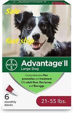 Advantage Ii Large Dog Flea Treatment & Flea Prevention - 6 Pack, for 21-55 lbs