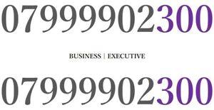 GOLD EASY MEMORABLE VIP MOBILE NUMBER PLATINUM BUSINESS 300 9999
