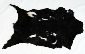 """New Goat hide Rug Hair on Area Rug Size 36""""x24"""" Animal Leather Goat Skin GH_2"""