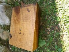 B41 Hickory Wood Turning Block Blank 9.5x7x4 Inches Woodwork Knife Bowl carving