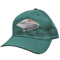 NCAA UM Miami Hurricanes Canes Green Vintage Retro Curved Bill Snapback Hat Cap