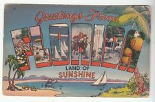 """[51562] OLD LARGE LETTER POSTCARD GREETINGS FROM FLORIDA """"THE LAND OF SUNSHINE"""""""