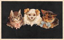 AK Litho. Künstlerkarte Hund und Katzen mit Schleifen Postkarte gel. 1926